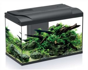 hs-aqua-aquarium-platy-70-bio-led-zwart