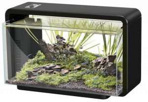 superfish-home-25-aquarium-zwart