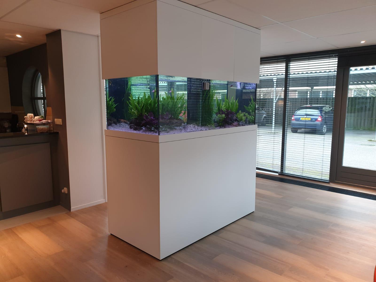 Aquarium uitgedacht, gebouwd en geplaatst